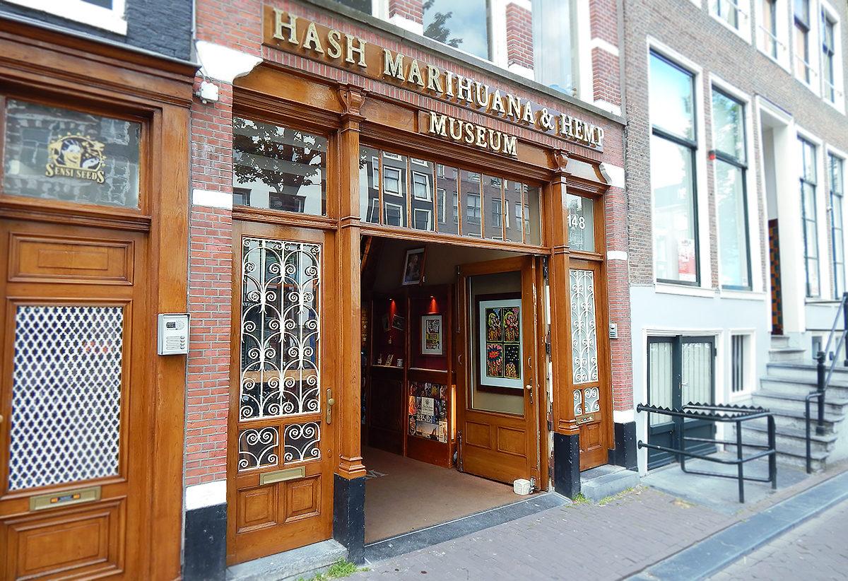 Амстердам музей марихуаны и гашиша выходит марихуана из организма