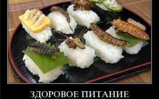 На вкус и цвет… Самые отвратительные на вкус блюда мира — обзор