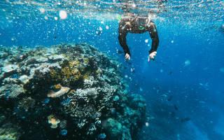 Большой Барьерный риф, Австралия — обзор