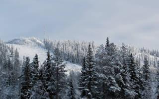Пальякка  — обзор и отзывы лыжного курорта Финляндии