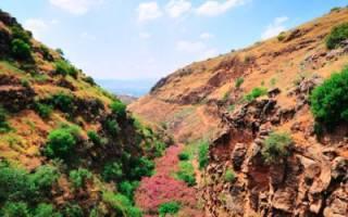 Хамат-Гадер — что посмотреть по городам Израиля