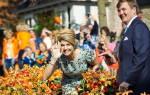 День Королевы, Нидерланды — обзор