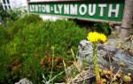 Перегон Lynton & Lynmouth Cliff, Великобритания — обзор