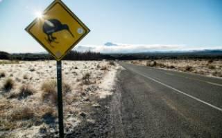 Уакапапа — обзор и отзывы лыжного курорта Новой Зеландии