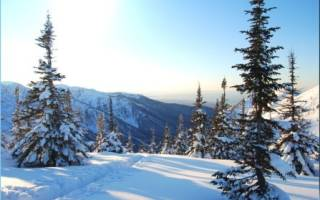 Обзор и отзывы лыжного курорта Мамай