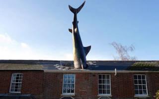 Монумент «Хедингтонская акула», Великобритания — обзор