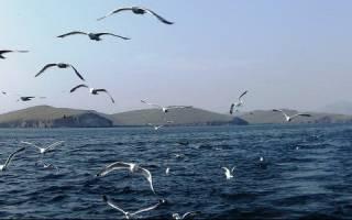 Озеро Байкал, Россия — обзор