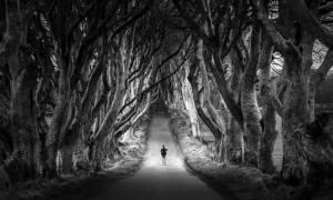 Темная аллея, Ирландия — обзор