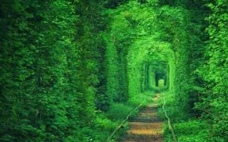 Тоннель любви, Украина — обзор