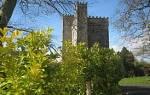 Замок Баберстоун, Ирландия — обзор