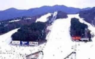 Бэарс Таун — обзор и отзывы лыжного курорта Южной Кореи