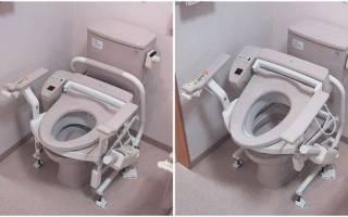 Космический туалет, Япония — обзор
