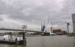 Мост Эразма, Нидерланды — обзор