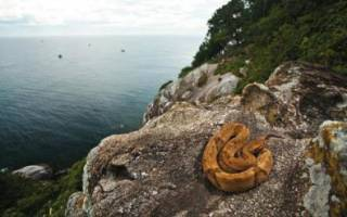 Остров Кеймада-Гранди, Бразилия — обзор