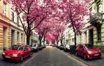 Улица Херштрассе, Германия — обзор
