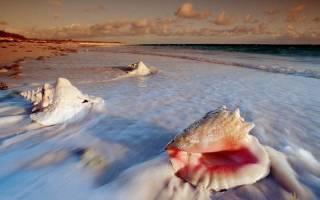 Кэт-Айленд — что посмотреть на Багамских Островах