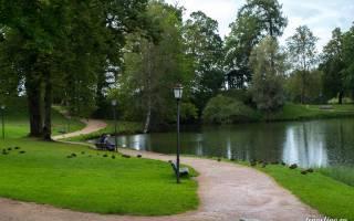 Цесис — что посмотреть по городам Латвии