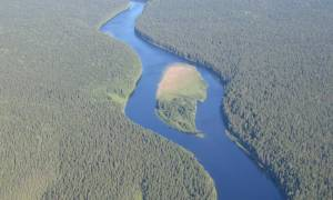 Девственные леса Коми, Россия — обзор