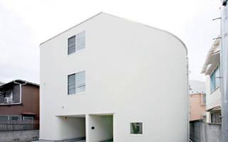 Дом с горкой, Япония — обзор