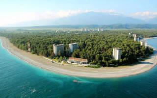 Абхазия что посмотреть в Пицунда