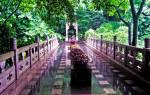 Пещера тростниковой флейты, Китай — обзор