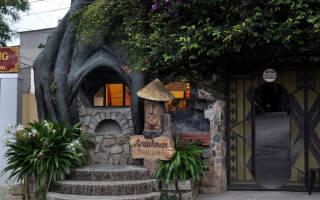 Гостиница «Сумасшедший дом», Вьетнам — обзор