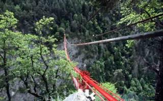 Мост Ниус, Швейцария — обзор