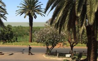 Гондэр — что посмотреть по городам Эфиопии