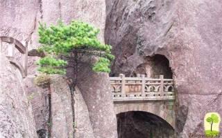 Бессмертный мост, Китай — обзор