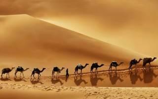 Пустыня Руб-эль-Хали, Саудовская Аравия — обзор