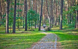 Бирштонас — что посмотреть по городам Литвы