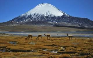 Озеро Чунгара, Чили — обзор