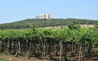 Замок Кастель-дель-Монте, Италия — обзор