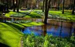 Парк цветов Кекенхоф, Нидерланды — обзор