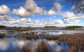 Национальный парк Доньяна, Испания — обзор