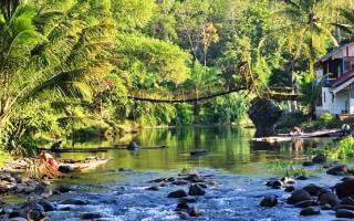 Калимантан — что посмотреть по городам Индонезии