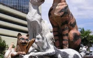 Памятник бездомным котам, Германия — обзор