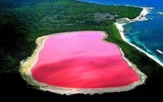 Озеро Хиллер, Австралия — обзор