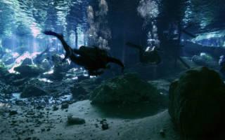 Пещера Окс-Бель-Ха, Мексика — обзор
