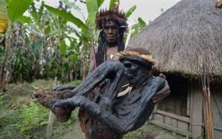 Племя Калам, Индонезия — Папуа-Новая Гвинея — обзор