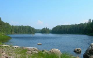 Река Шуя, Россия — обзор