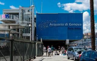 Аквариум Генуи, Италия — обзор