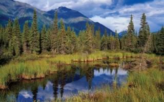 Национальный парк Рангел-Сент-Элайас, США — обзор
